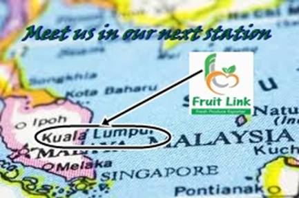 Fruit link in malaysia